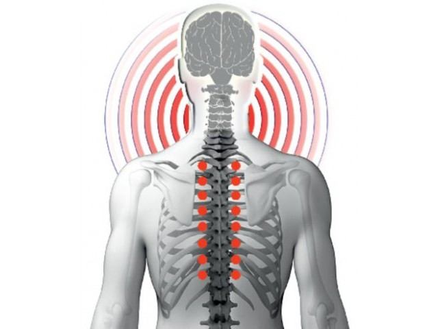 Spine care