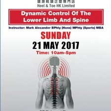 Dynamic control of Spine and Lower Limb